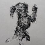 Petit dessin du mercredi - Feutre noir sur papier japon